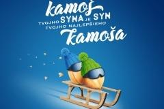 8_SK_syn_kamosa